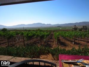 Hacienda Guadalupe - Ruto del Vino