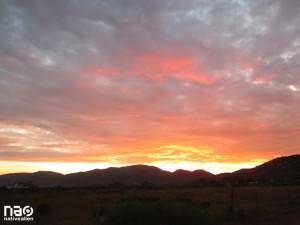 Valle de Guadalupe - Ruta del Vino