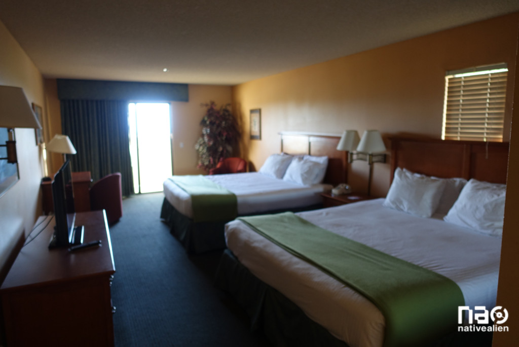 Miracle Springs King King Suite (blurry)