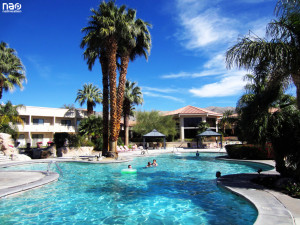 Miracle Springs Pool Area
